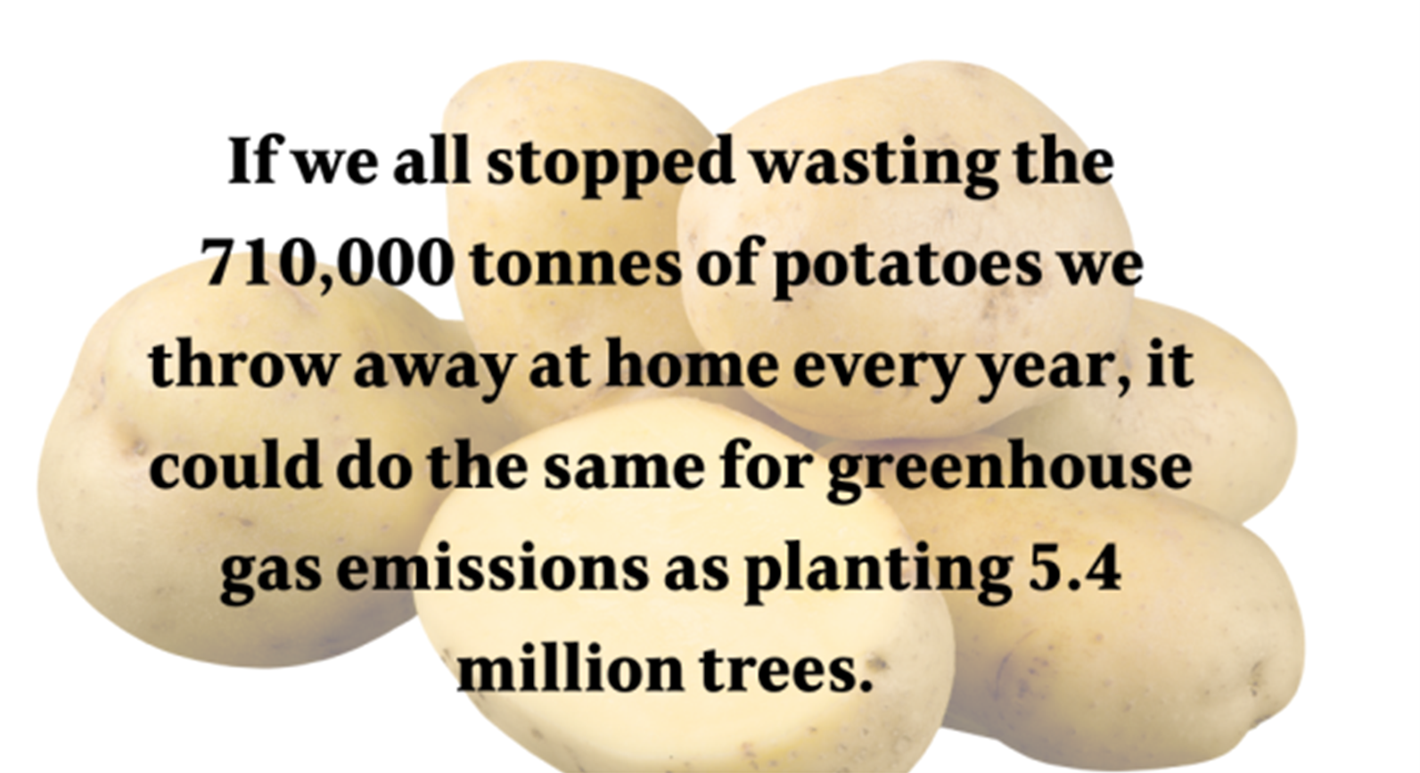 Infographic about the impact of wasting potatoes