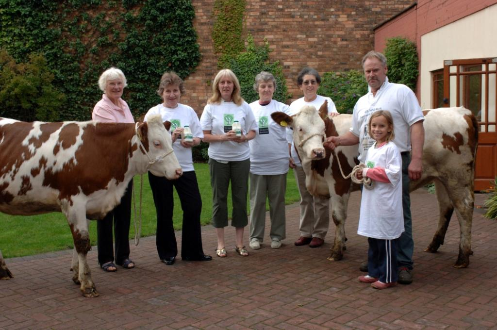 A group of older and younger people standing next to two cows on a farm