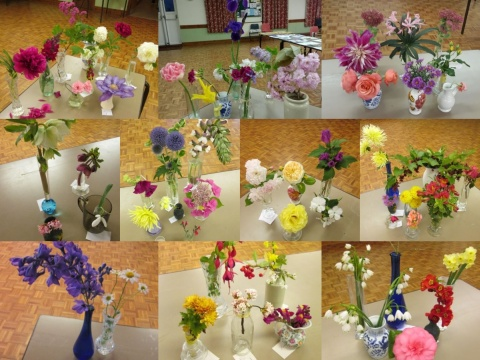 Collage of 2019 Flowers of the month