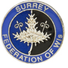 colour surrey logo