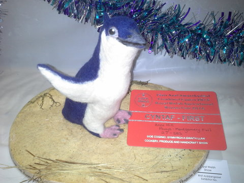 Winning Penguin by Anne Hill, Powys Montgomery