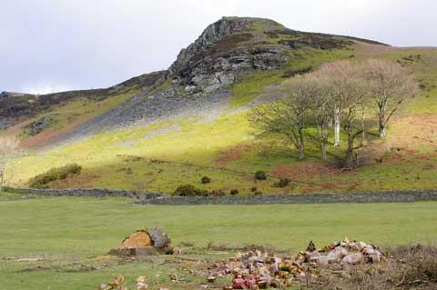 Foelallt Valley Llanddewi Brefi