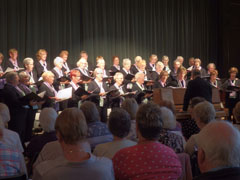 Choir performing at A Twist of Summer