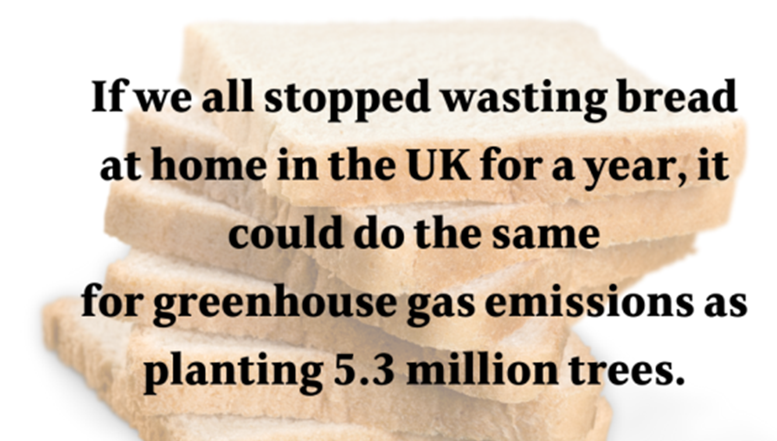 Infographic about the impact of wasting bread
