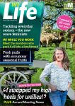 WI Life cover July and August 2014
